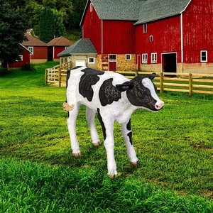 Buttercup, the Life-Size Holstein Calf Dairy Cow Statue