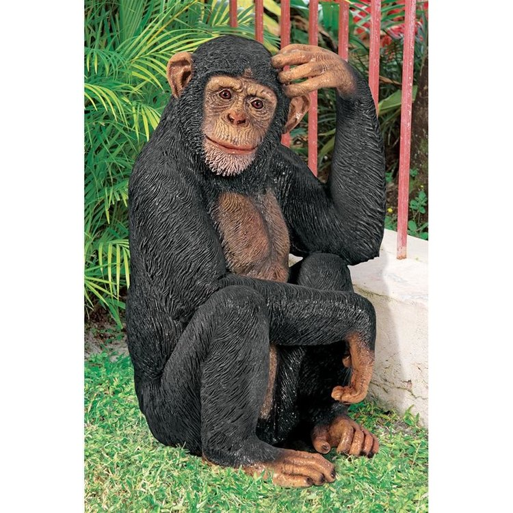View larger image of Chauncey the Confused Chimp Garden Monkey Statue