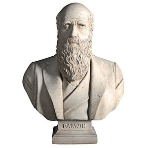 The Evolution of Charles Darwin Bust Statue