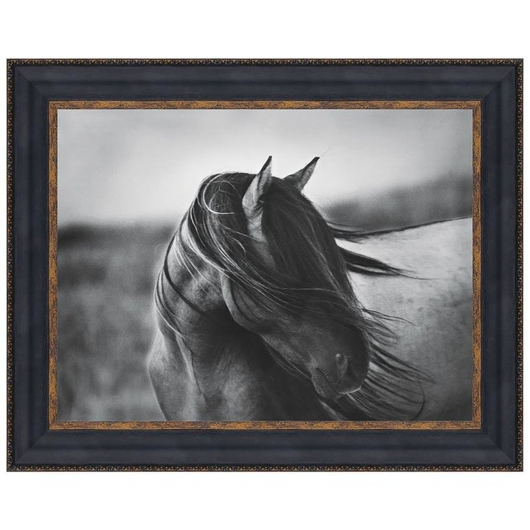View larger image of Fierce Grace Wild Stallion Horse Print Under Glass: without Mat