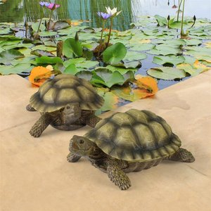 Gilbert, the Box Turtle Statues: Set of Two