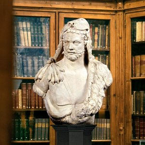 Hercules the Great Greek God of Strength and Heroes Bust Statue