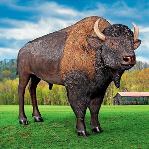 Large Scale Buffalo of the Great Plains Statue
