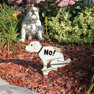 No Pausing Pooch Lawn Sign Stake Sign Collection