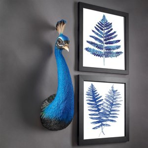 Prized Peacock Trophy Wall Sculpture