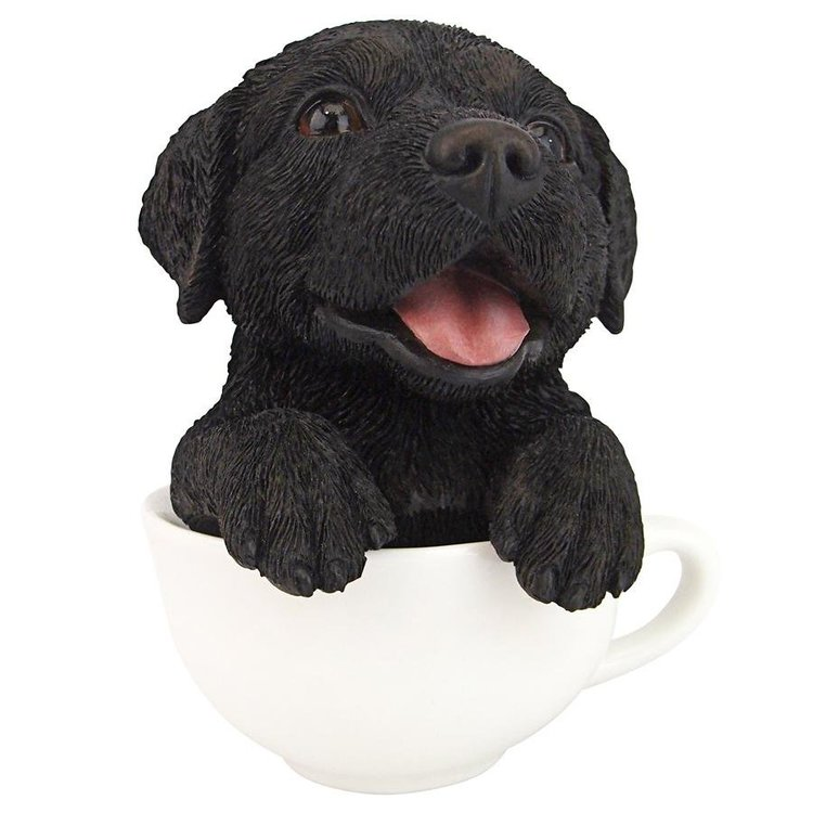 View larger image of Puppuccino Puppy Pug Collectible Dog Statue