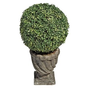 The Topiary Tree Collection: Large Ball