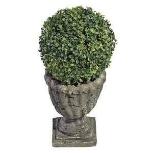 The Topiary Tree Collection: Medium Ball