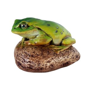 Toad on Rock Statue